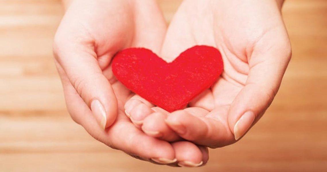How do I donate an organ